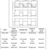 Pengirim Sinyal pada Pengapian Elektronik
